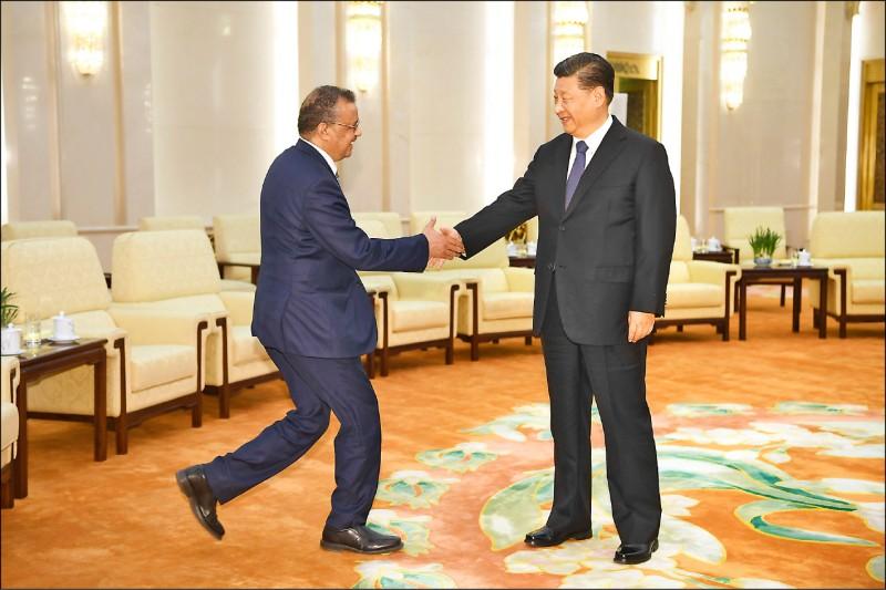 德國媒體踢爆,中國國家主席習近平(右)一月底曾致電世界衛生組織秘書長譚德塞,要求對方壓下病毒人傳人等疫情真相。圖為譚德塞一月廿八日在北京人民大會堂與習近平會晤。(美聯社檔案照)