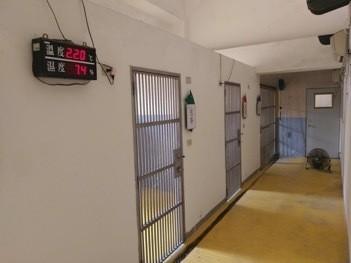 高雄搜救犬訓養中心一期犬舍每隻狗狗的犬舍大小為9平方公尺、約為2.72坪。(桃園市議員簡智翔提供)
