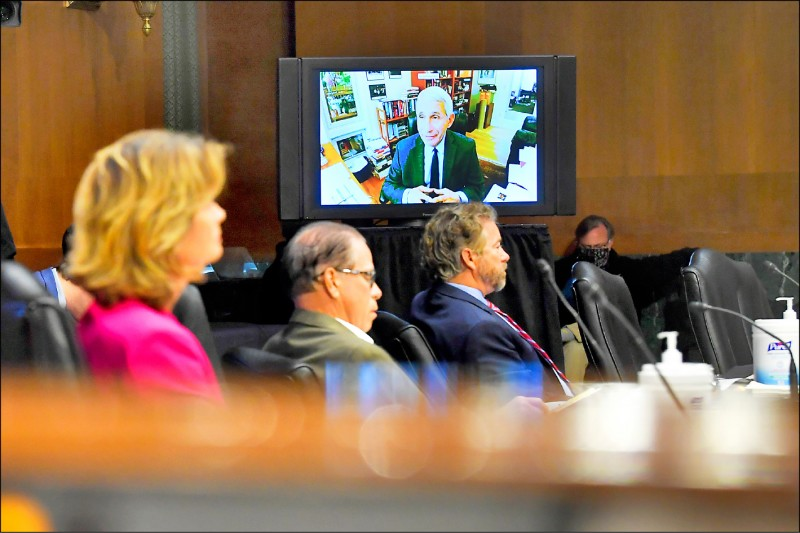 美國聯邦參議院衛生委員會成員十二日出席聽證會,聽取首席防疫專家佛奇視訊談話。(美聯社)