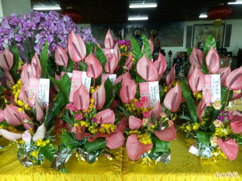 台灣火鶴是禮佛好選擇。(記者張軒哲攝)