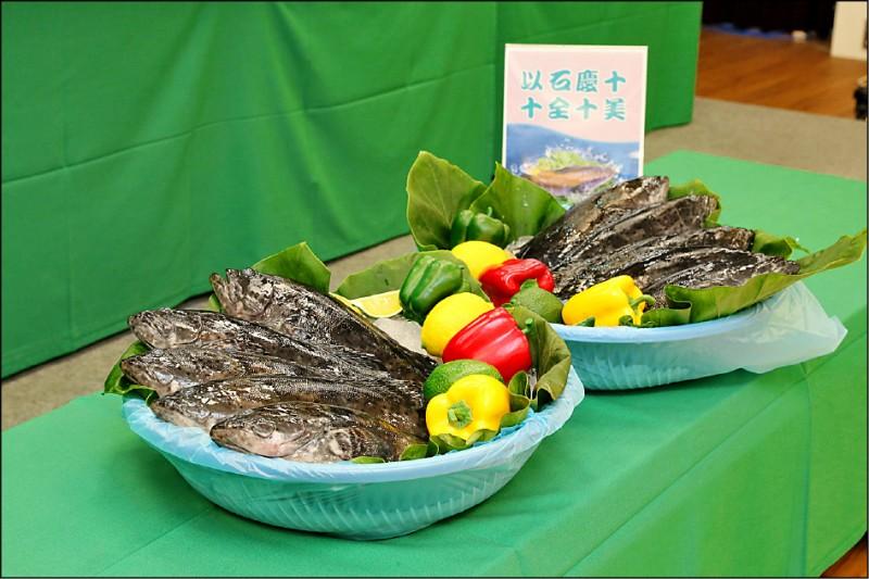 農委會漁業署送上10隻石斑魚到指揮中心,慶祝台灣連10天零確診。(指揮中心提供)