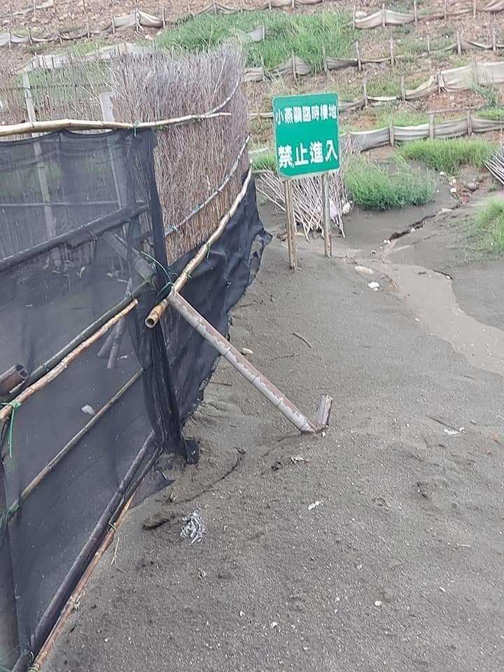 竹圍漁港小燕鷗育雛區設置有圍籬及禁止進入告示。(取自桃園市野鳥學會臉書)