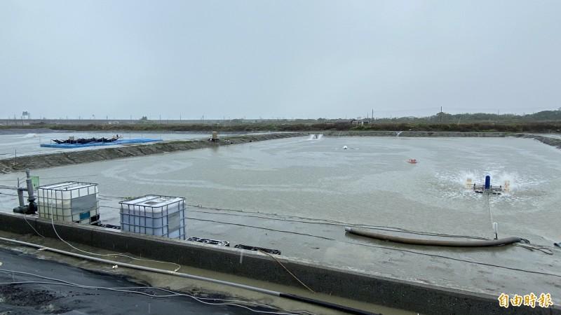 魚塭裝設智慧養殖設施水質監測、智慧水車、投餌、智能電箱。(記者楊金城攝)