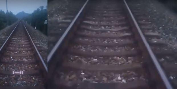 男站鐵軌拍狗屍製「警世教育影片」 下一秒卻被火車撞死