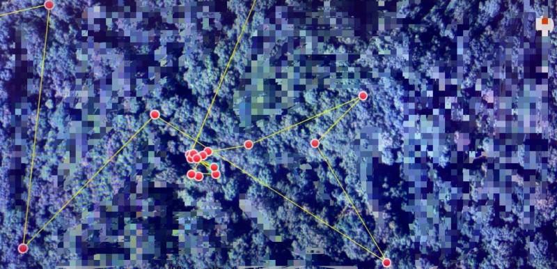 台東林管處臉書貼出廣原小熊活動的衛星定位連結畫面,為免曝露牠現在生活區域,特別打上多處馬賽克。(記者黃明堂翻攝)