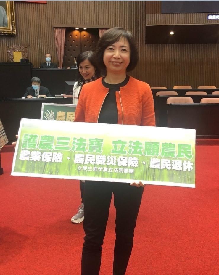 民進黨立委何欣純表示林佳龍如果要再選市長她並不意外,但蔡其昌也是準備已久,至於她自己目前則沒有規劃。(圖取自何欣純臉書)