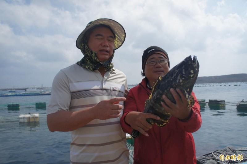 澎湖優鮮打入美國市場,首批以龍虎斑為主。(記者劉禹慶攝)