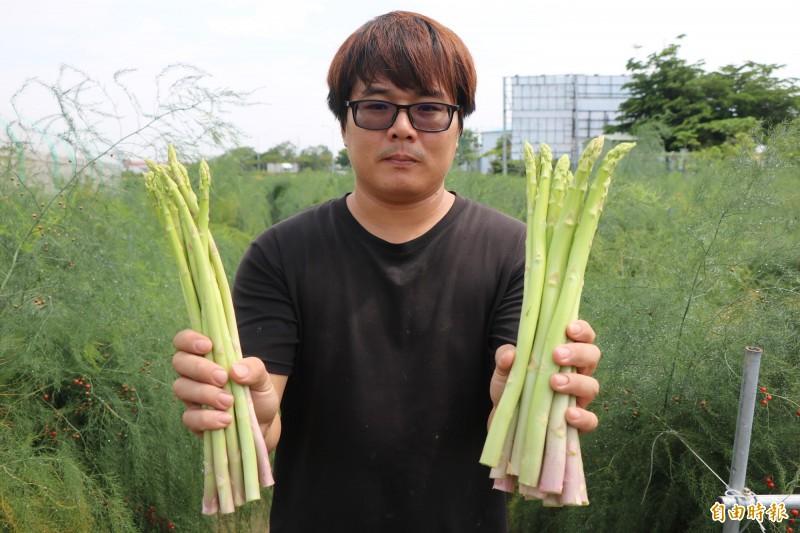 新市青農王彥鈞利用農閒時刻在露天栽種蘆筍。(記者萬于甄攝)
