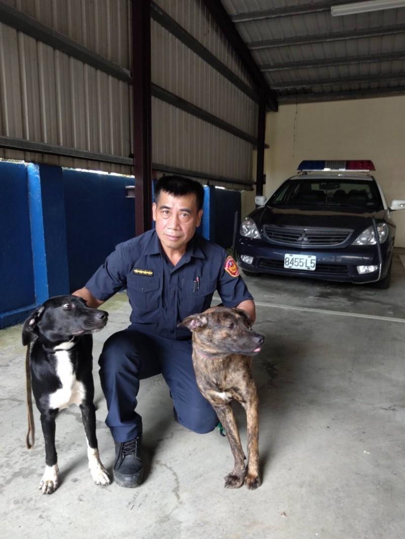 申春光為布農族優秀員警,平時就喜愛登山,常常帶著兩隻愛狗到山內運動。(記者鄭景議翻攝)