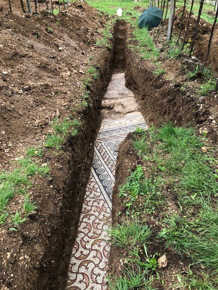 義大利考古學家在內格拉一所葡萄園地下發現一塊巨大而美麗的馬賽克地板。(擷取自Comune di Negrar di Valpolicella臉書)