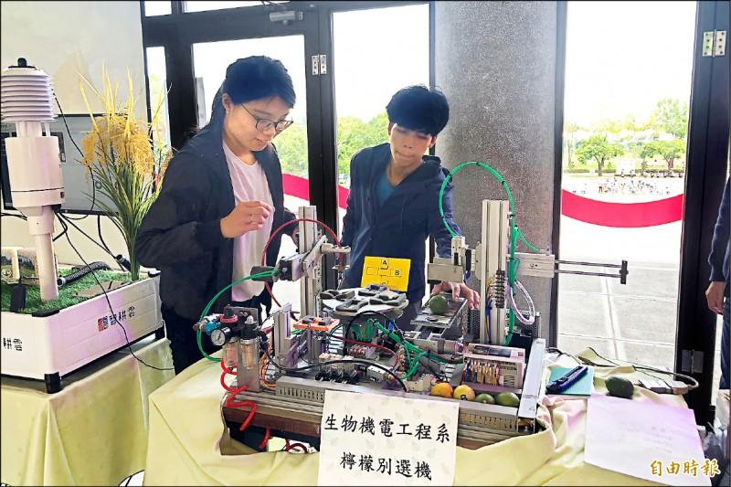 屏東科技大學開發「檸檬選別機」,透過感測器從檸檬的重量、顏色進行分類,提高分級效率。(記者邱芷柔攝)