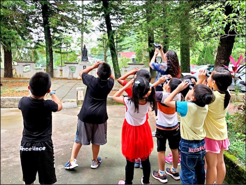 永福國小師生拿著望遠鏡找尋站在南洋杉的貓頭鷹。(記者李容萍翻攝)