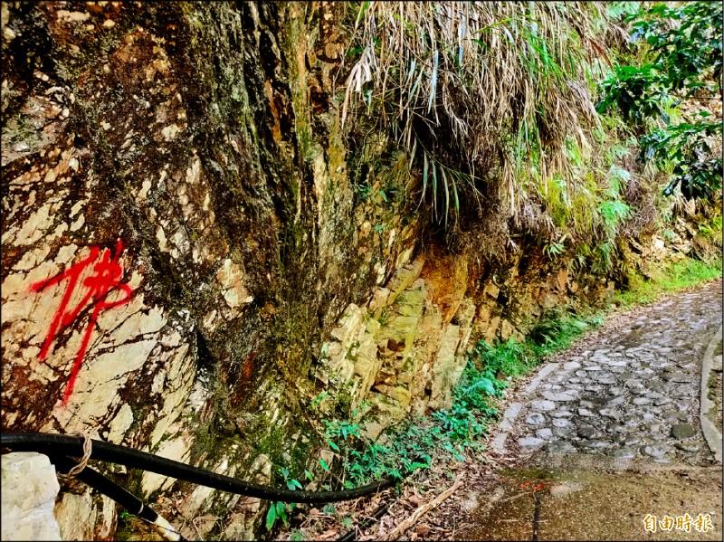 最近觀音瀑布登山步道旁天然石壁,遭人用紅漆寫上「佛」字。(記者佟振國攝)