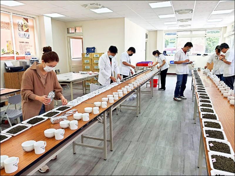 仁愛鄉農會2020「台灣高山茶王」春季優良茶競賽,經過連續三天評審,結果出爐。(仁愛鄉農會提供)