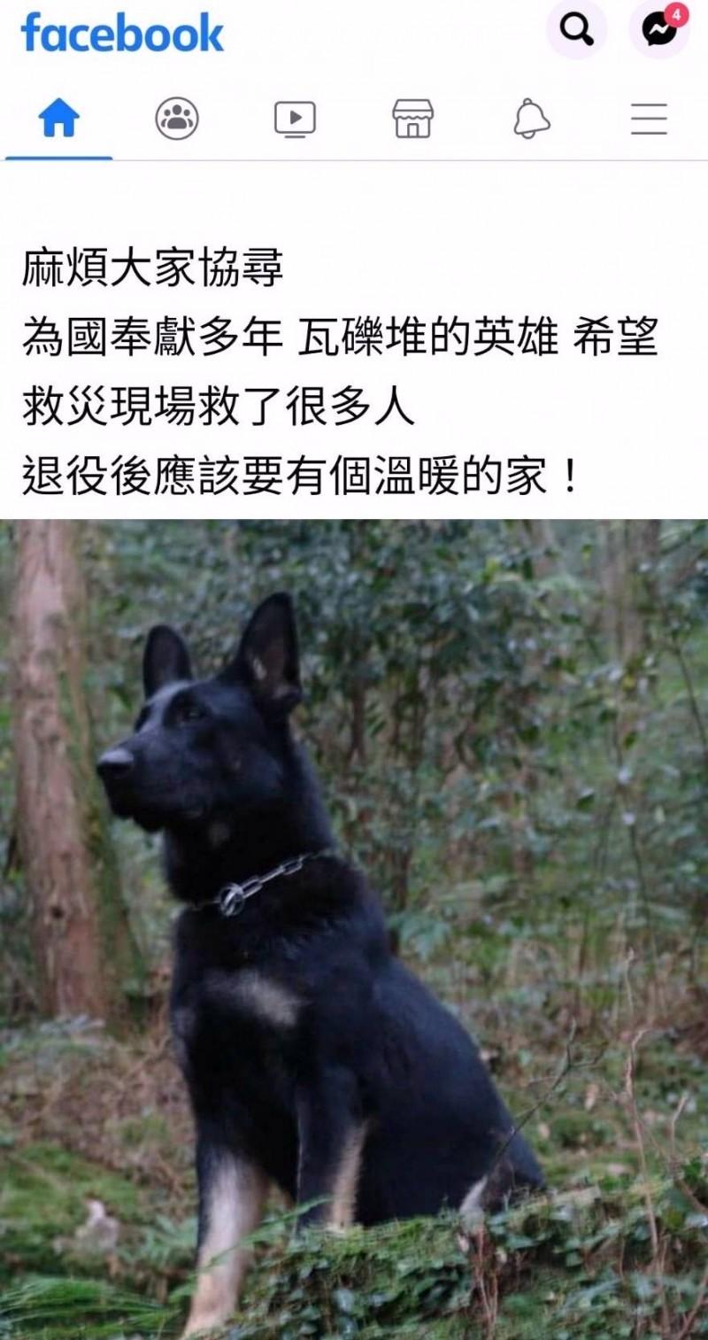 搜救犬「希望」傳出走失消息後,認養人在地方社群PO拜託大家幫忙協尋情形。(記者謝介裕翻攝)