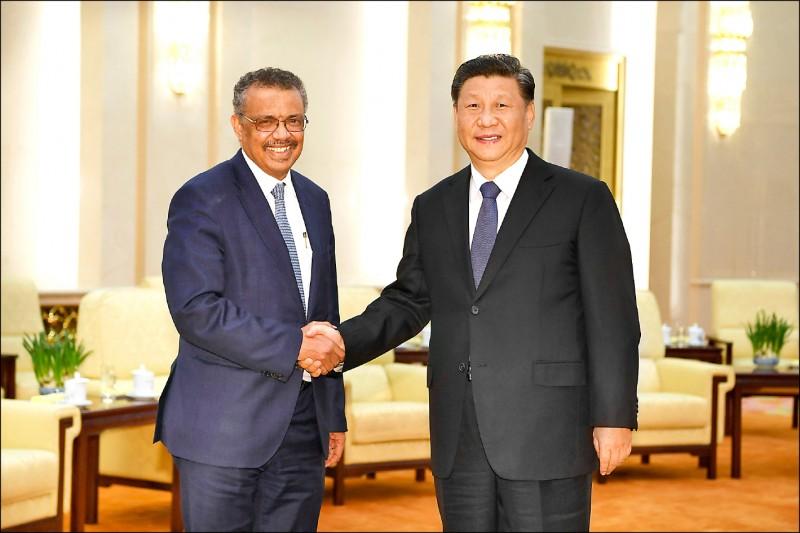美聯社披露,世界衛生組織(WHO)是為了從中國口中擠出更多資訊,才不斷讚美中國。圖為WHO秘書長譚德塞(左)今年一月與中國國家主席習近平(右)在北京會面。(美聯社檔案照)