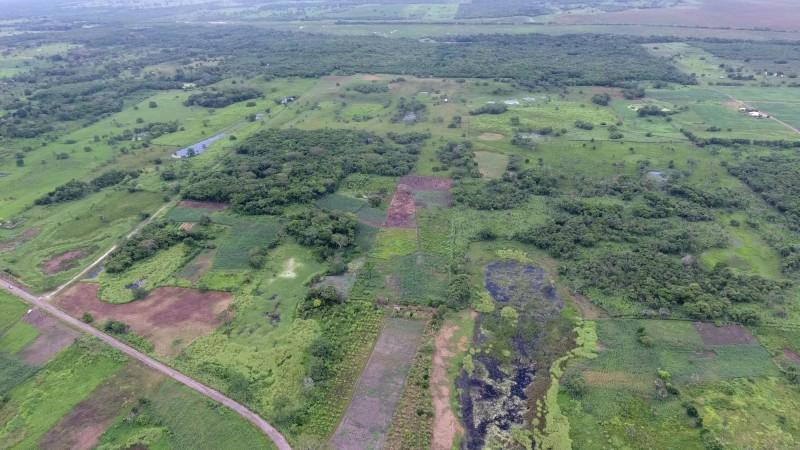 學者在墨西哥東部發現了一個疑似是迄今人們所發現最大、最古老的馬雅遺址。(路透)