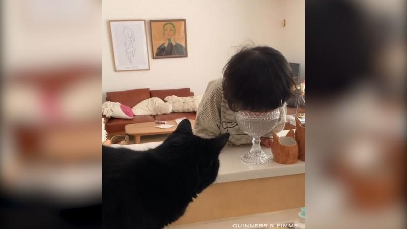 日本一名跟貓一起長大的男孩,可能受到貓咪的影響而把頭塞進水杯裡喝水。(圖片由Instagram帳號rina_takei授權提供使用)