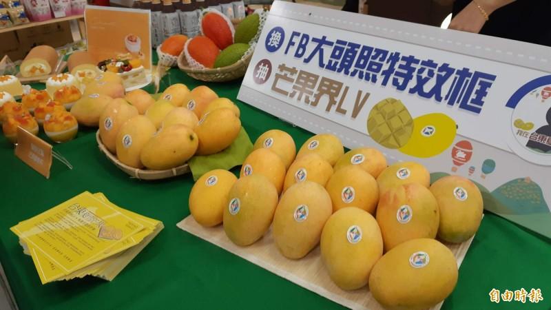 台東夏雪芒果由台灣好農銷往香港,首批200箱昨天出貨,1公斤高達600元。(記者黃明堂攝)