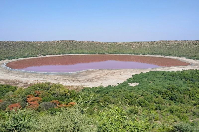 印度隕石湖Lonar Lake,近來湖水突然變成超夢幻的粉紅色。(法新社)