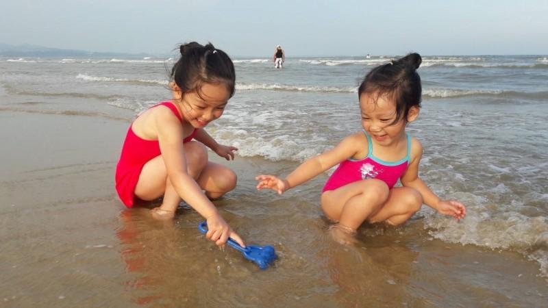 金門推出「親子嘉年華」體驗項目之一挖花蛤。(圖:金門縣政府提供)
