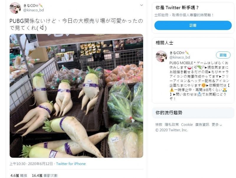 日本有網友在推特上分享「人型蘿蔔」照。(圖擷取自推特)