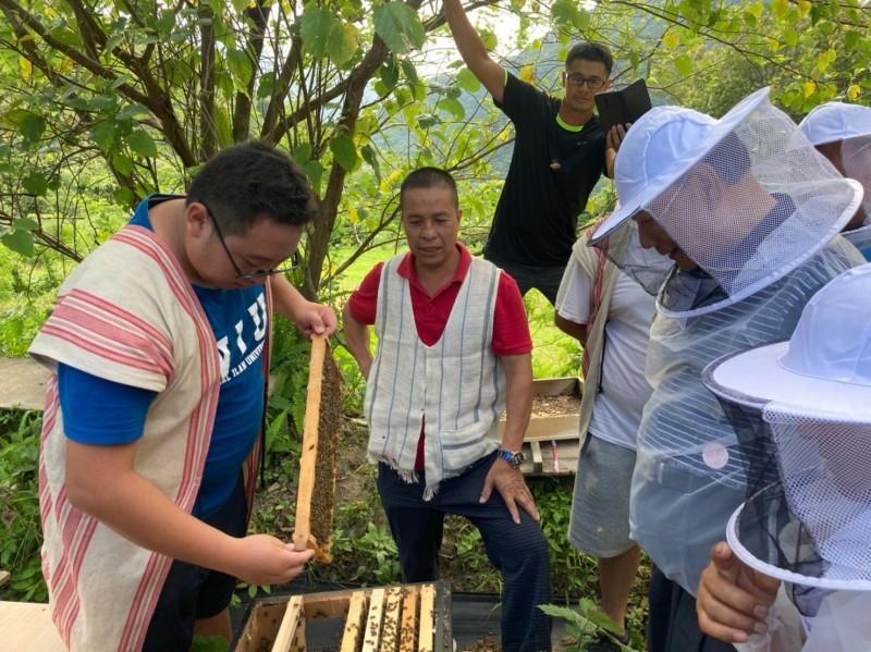 澳花社區的野蜂養在森林環境之中,蜜源來自鄰近樹種,依季節變化各有不同口味,成為獨特的「森林蜜」。(記者張議晨翻攝)