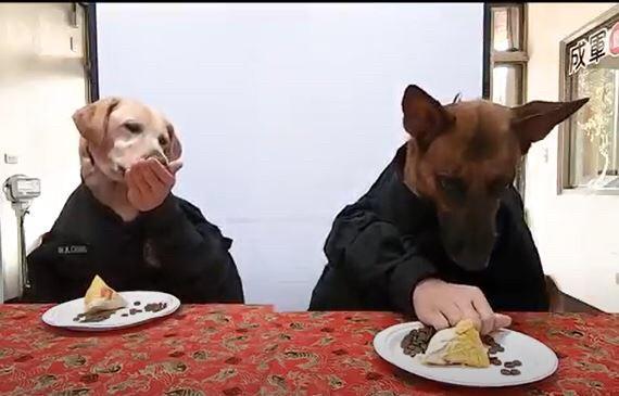 台中市警犬隊拍攝應景的端午節短片。(記者許國楨翻攝)