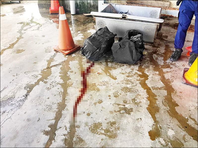 高雄市清潔隊員連兩天在愛河撈到旅行袋,昨早好奇打開其中一袋,赫見袋內裝著兩截小腿屍塊。(記者陳文嬋翻攝)