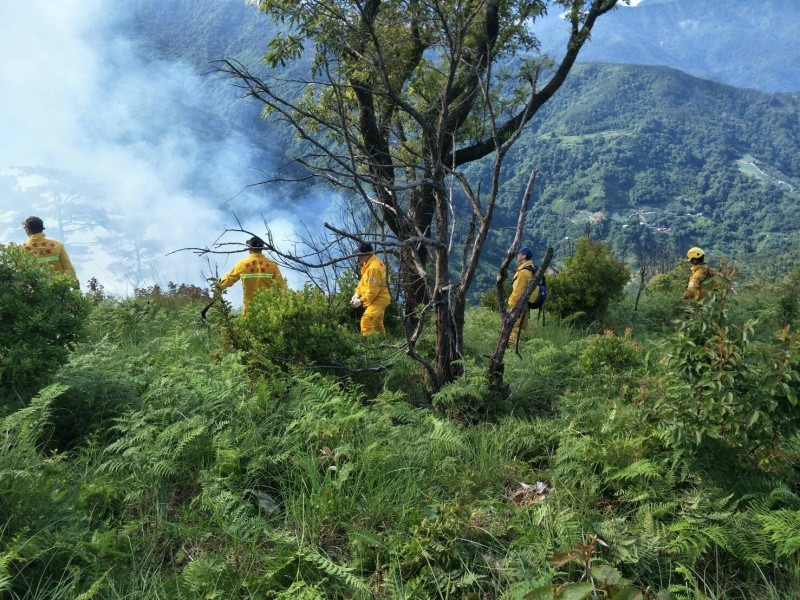 東勢林管處等人員正開闢防火線,防止火勢擴大。(東勢林管處提供)