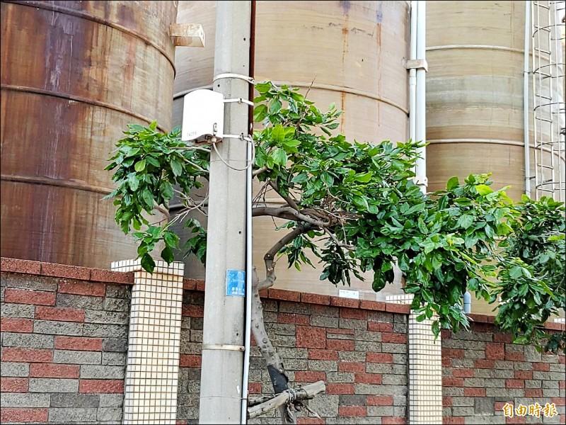 空氣盒子布建首點就選在觀音工業區,目前觀音工業區已布建一五五個空氣盒子。(記者鄭淑婷攝)