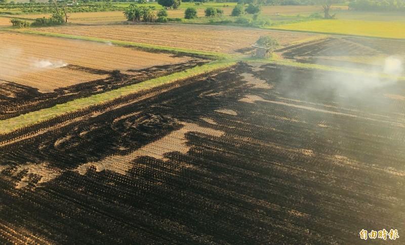一期稻作、花生收成結束,連日來可見民眾燃燒稻草情況,影響空氣品質及行車視線。(記者黃淑莉攝)