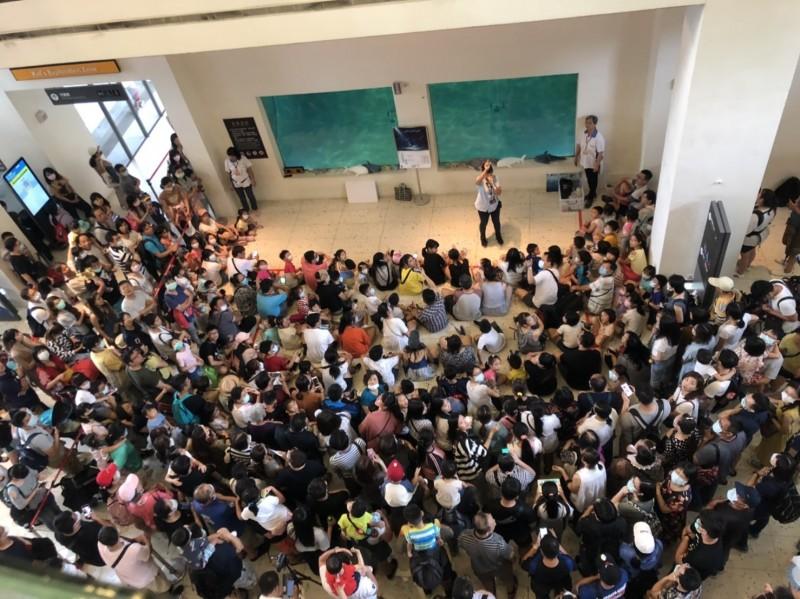端午節4天連續假期,國立海洋科技博物館昨天第一天出現7000人入園的人潮,今天到下午1點也已經出現4000人次購票入園。(記者俞肇福翻攝)