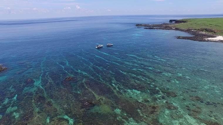 海底薰衣草森林為南方四島知名美景。(海管處提供)