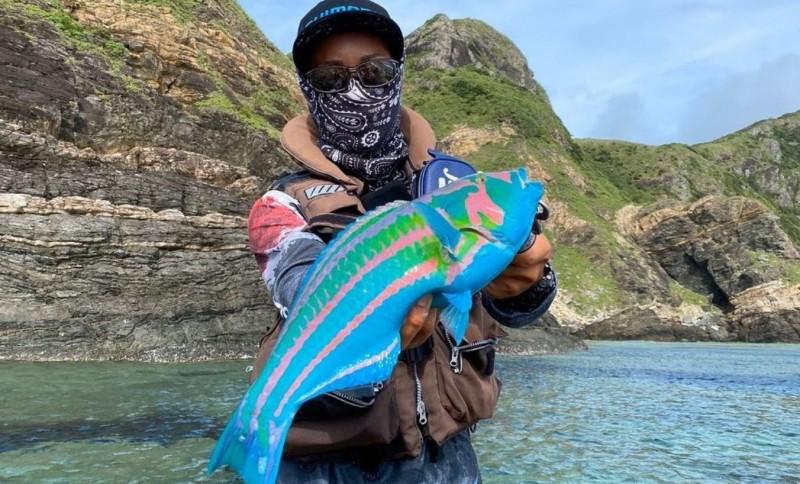 熱愛釣魚的日本網友,意外釣到了色彩斑斕的大魚。(圖擷取自推特)
