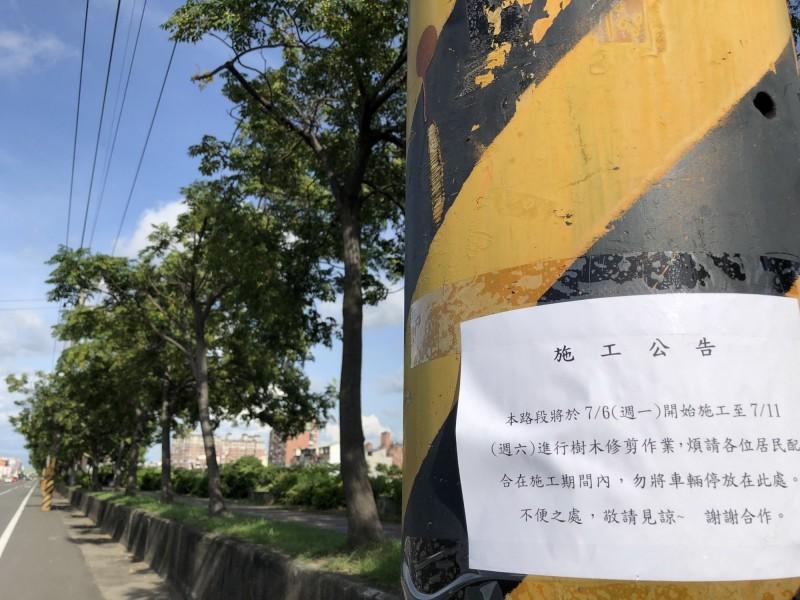 台江志工發現綠道旁的電線桿上貼著要修剪樹木的公告,憂心這一段美麗的綠色隧道今年炎夏恐會消失。(記者蔡文居翻攝)