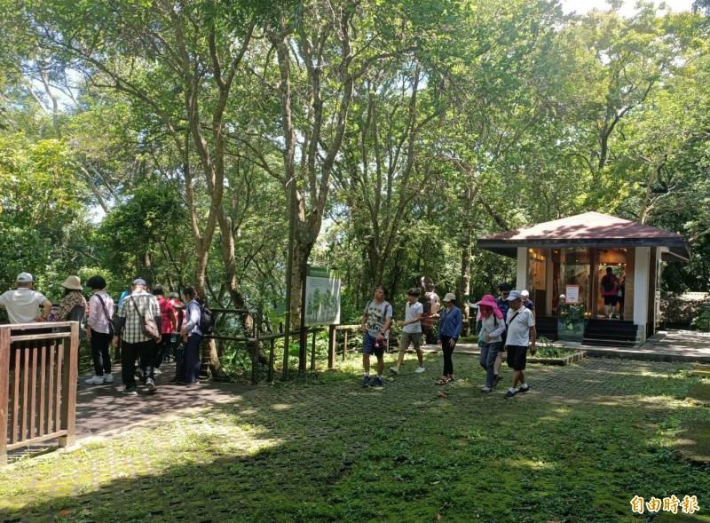 桃園市復興區拉拉山成為端午連假最熱門景點,通往巴陵古道園區的步道人潮湧現。(記者李容萍攝)