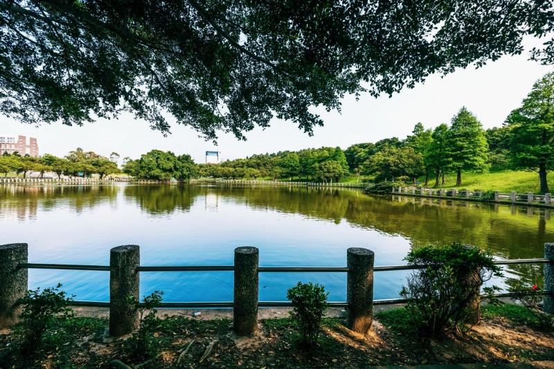 志清湖踏青野餐趣活動將於7月22日、23日登場。(記者周敏鴻翻攝)