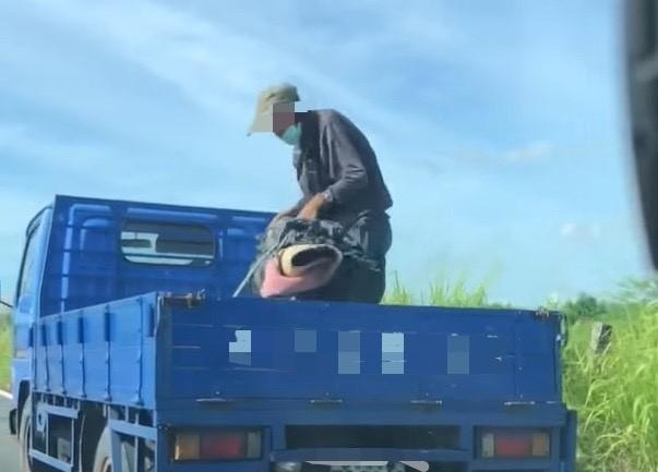 老阿仔在貨車上亂丟廢棄物到農地上。(圖由讀者提供)