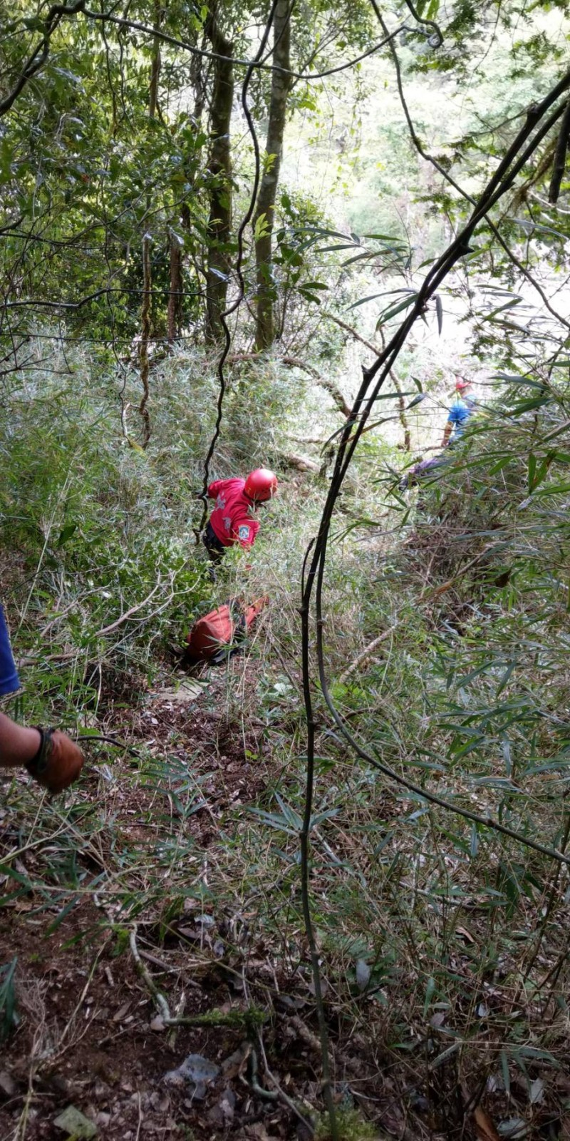 新北登山隊伍一位王姓隊員失足墜谷,人已尋獲但無生命跡象。本照片為示意照,與本新聞無關。(資料照)