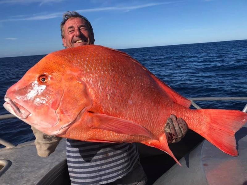 澳洲一名男子在昆士蘭東南部的彩虹海灘附近釣魚時,釣到一條重達22公斤、104公分長的怪獸級巨魚「川紋笛鯛(Red emperor)」。(圖擷取自「Rainbow Beach Deep Sea Fishing on the Keely Rose」臉書粉專)