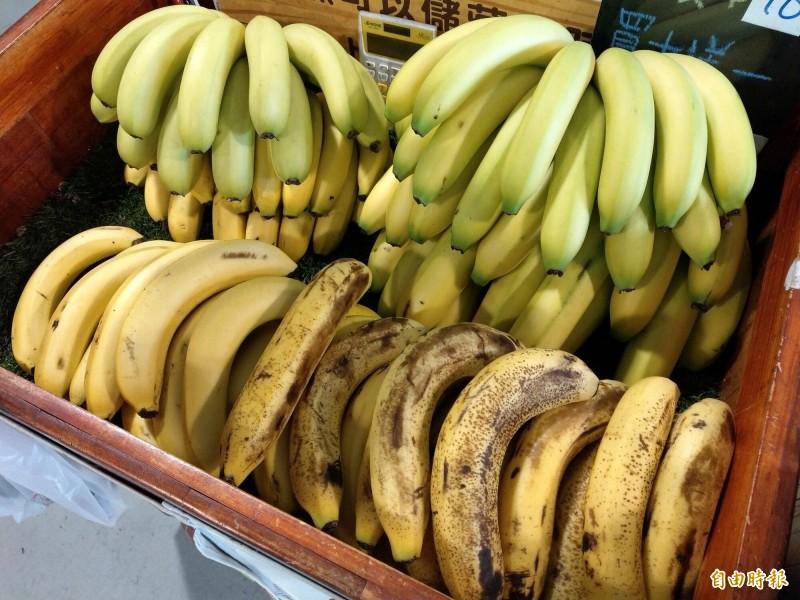 夏天香蕉產量大、生長快速,價格相對低,加上競爭力不敵多汁的瓜果類水果,使得夏蕉出現滯銷情況。(記者劉濱銓攝)