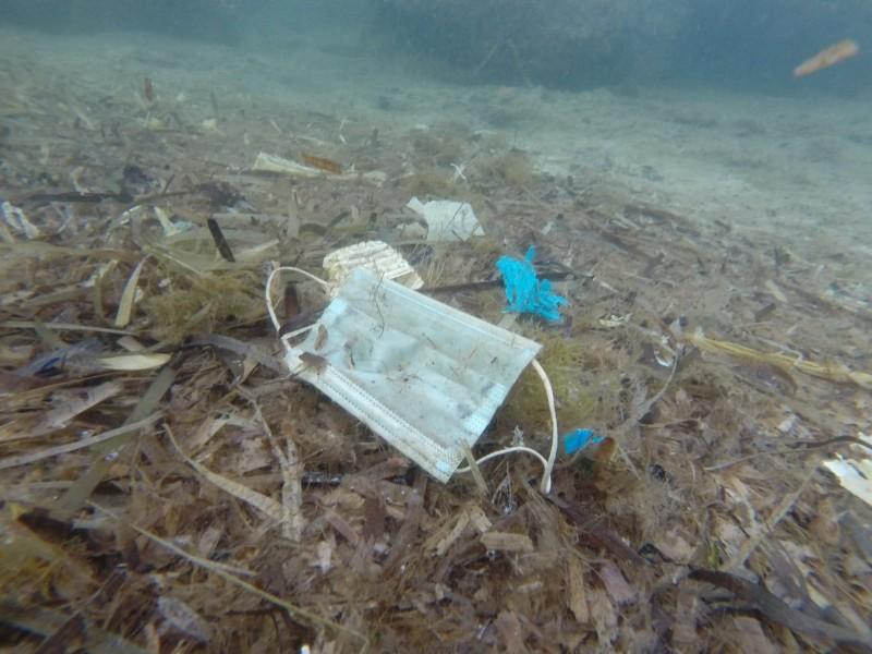 法國非營利組織潔淨海洋行動( Opération Mer Propre)於地中海海床上找到廢棄口罩。(路透)