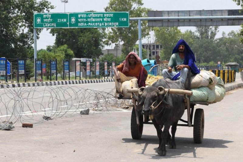 在印度與巴基斯坦的邊境上,兩名農夫騎著牛運送小麥。圖為示意圖。(法新社檔案照)