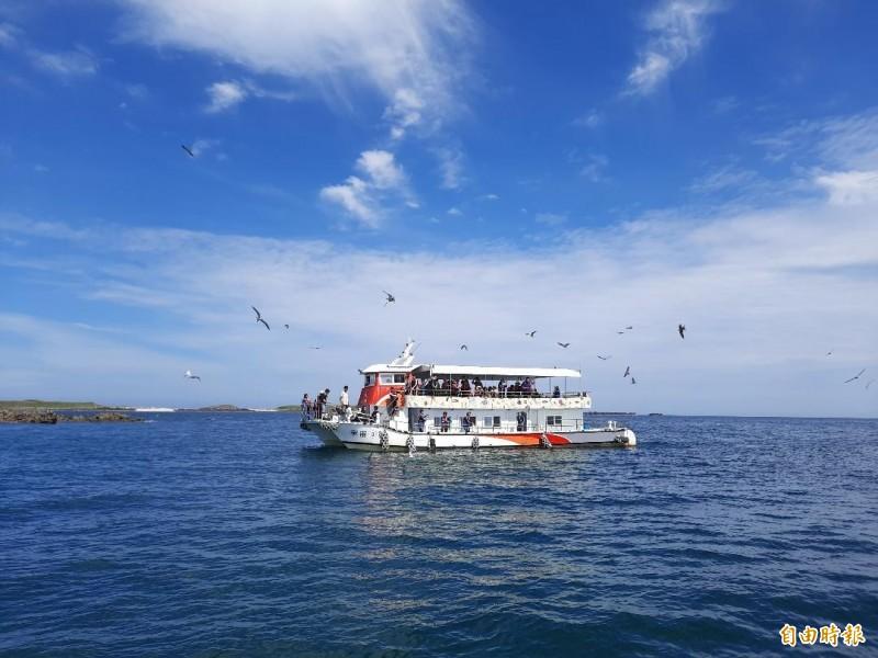 玄武岩自然保留區鐵砧嶼,燕鷗翩翩飛舞美景令人難忘。(記者劉禹慶攝)