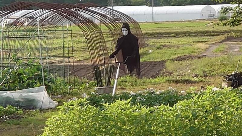 日本網友的爸爸自製的稻草人嚇壞網友。(圖片由推特帳號 jaguchi 授權提供使用)