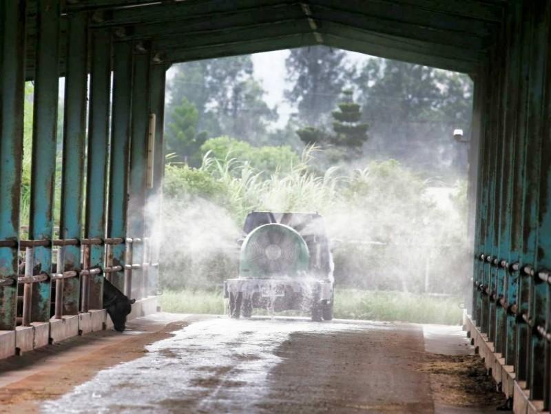 金門縣防疫人員日前針對發病牛場進行消毒。(資料照,金門縣政府提供)