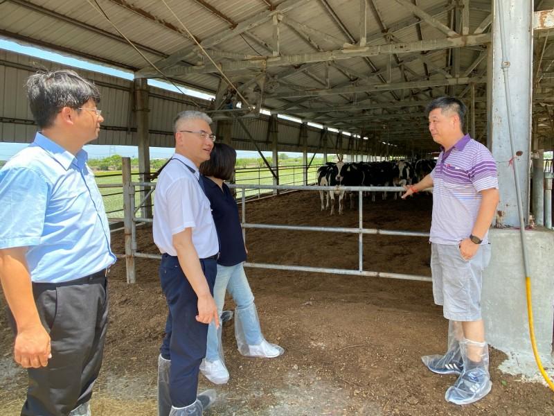 牛結節疹疑似病牛金門新增52頭,南市農業局今籲牛場加強防範,若發現牛隻罹患或疑患或可能感染,應立即主動通報。(南市動保處提供)