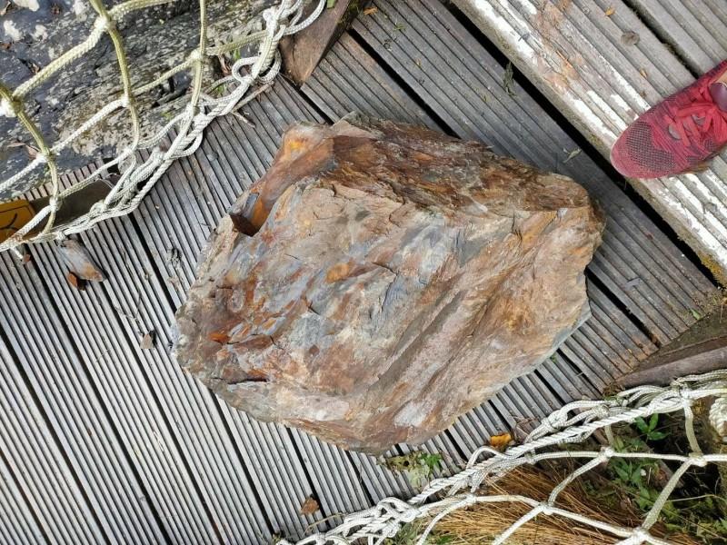 直徑約50公分的巨石,將木棧道砸破大洞。(記者張議晨翻攝)