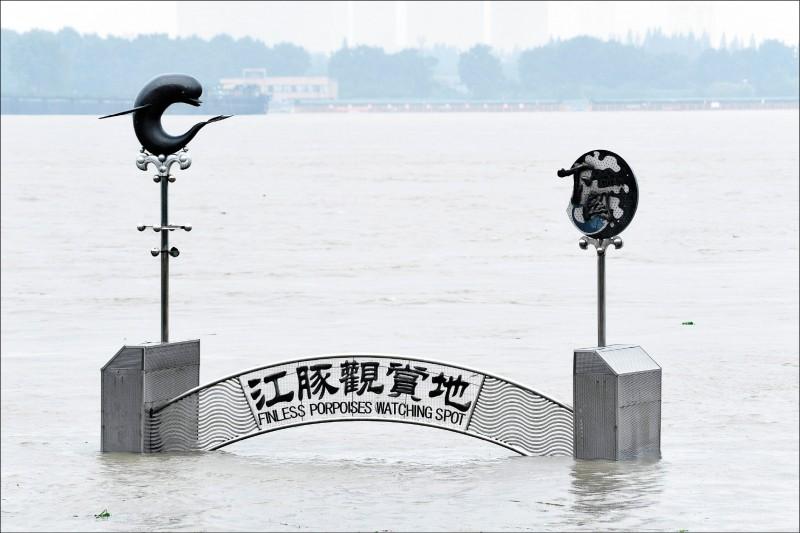 降雨不止導致中國今年洪災嚴重,南京市長江沿岸景點「江豚觀賞地」慘遭淹沒。(法新社)